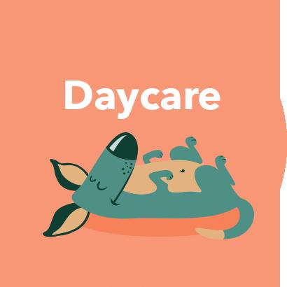 sunset dog retreat daycare logo